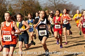 Oakville to host 2015 Cross Country Nationals
