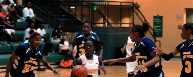 2011 Girls Basketball - Spring Fling 1