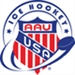 AAU Ice Hockey March Newsletter
