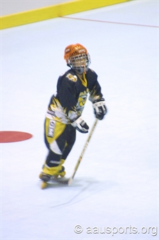 2003 Ice Hockey