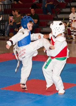 Qualify for Taekwondo Nationals and AAU Junior Olympics at AAU Gulf District Championships!