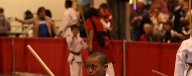 2008 AAU Junior Olympic Games - Karate