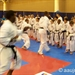 20011 AAU Junior Olympic Games - Karate