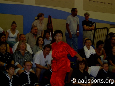 2006 Chinese Martial Arts
