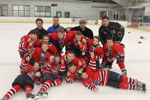 AAU National Ice Hockey Championships- Mite/Squirt Divisions- Awards