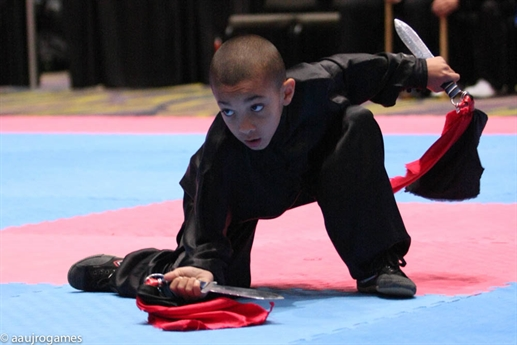 RECAP - 2014 AAU Junior Olympic Games - Kung Fu
