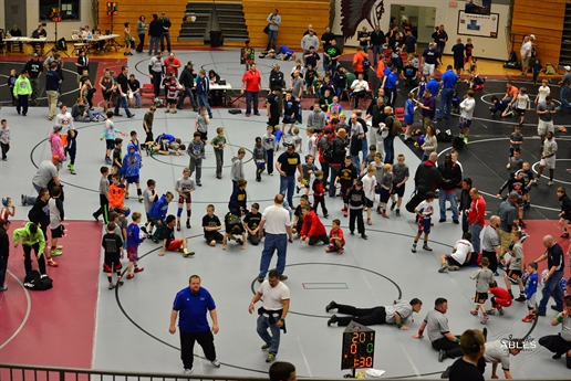 2015 AAU Wrestling Spring Youth Nationals - Photos