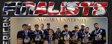 2015 AAU Hockey Squirt/PeeWee Nationals - Awards