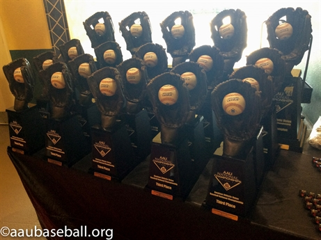 2015 AAU Baseball Grand Nationals - Week 2 Awards